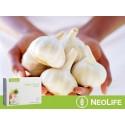 """""""Garlic Allium Complex"""", česnako ir svogūno maisto papildas"""